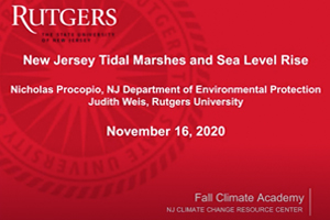 Tidal Marshes and Sea Level Rise