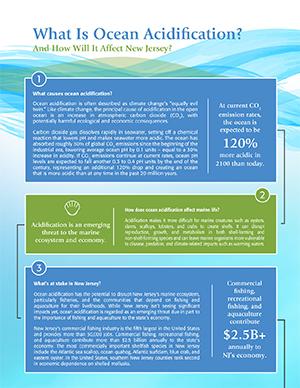 Ocean acidification Infographic