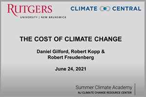 The Cost of Climate Change