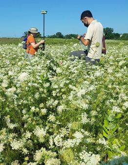 Rutgers-Duke Farms carbon mitigation research