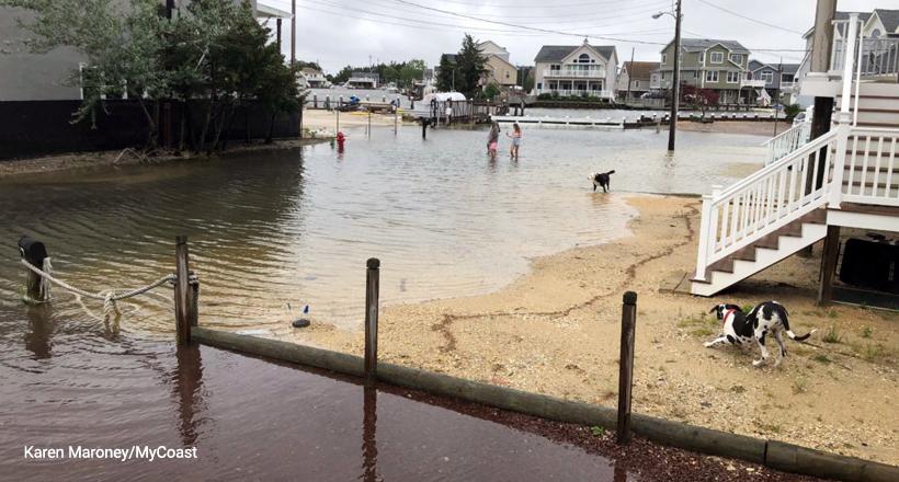 High tide flooding, Little Egg Twsp, NJ