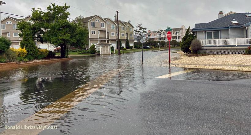 High tide flooding, Ocean City, NJ by Ronald Librizzi, MyCoast